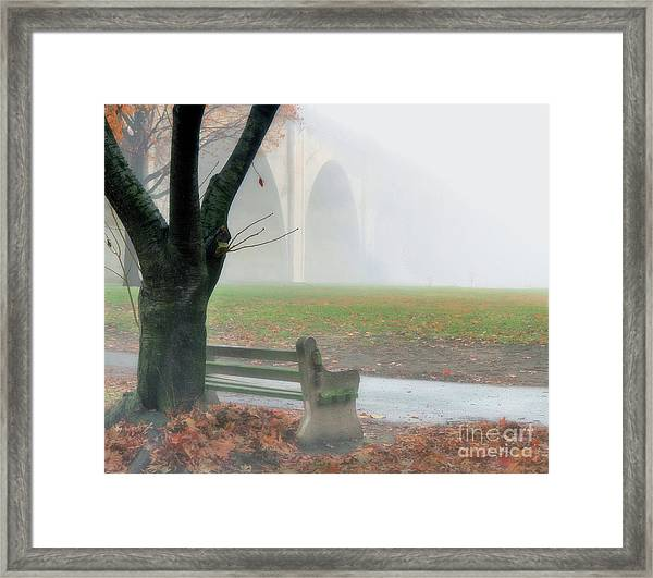 Lost In A Fog Framed Print