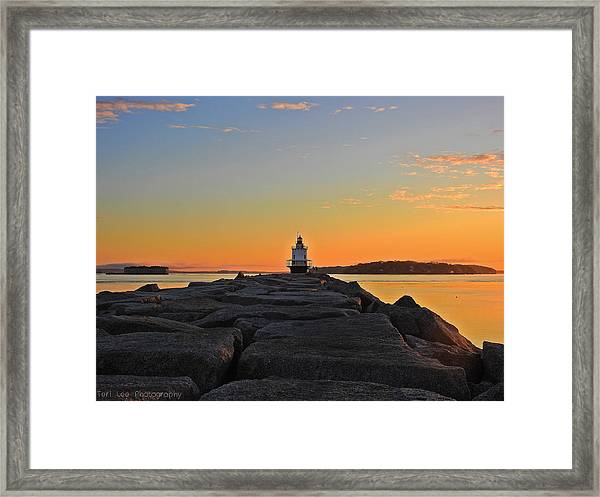 Lost In The Sunrise Framed Print