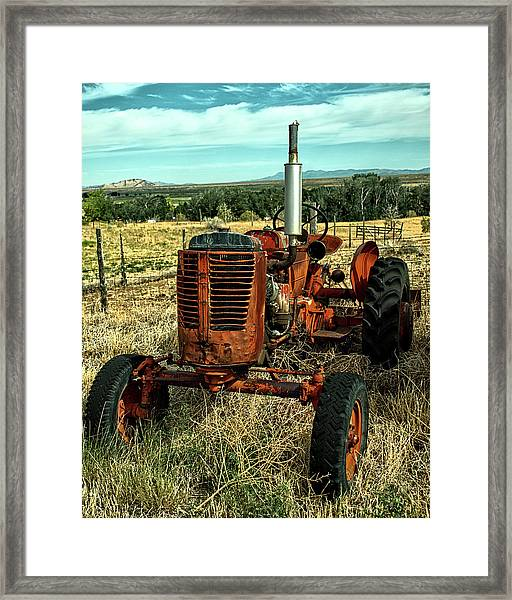 Lost It's Top Framed Print