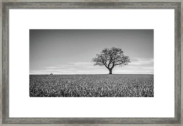 Framed Print featuring the photograph Lost by Nick Bywater