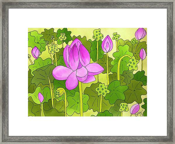 Lotus And Waterlilies Framed Print