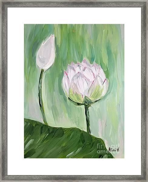 Lotus Emerging Framed Print