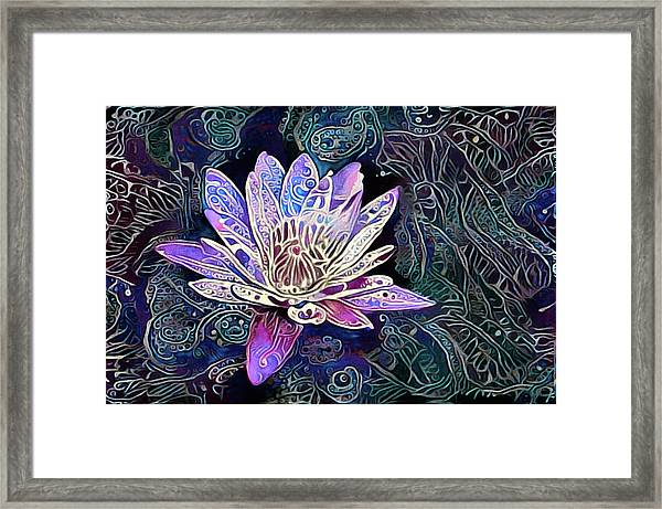 Lotus From The Mud Framed Print