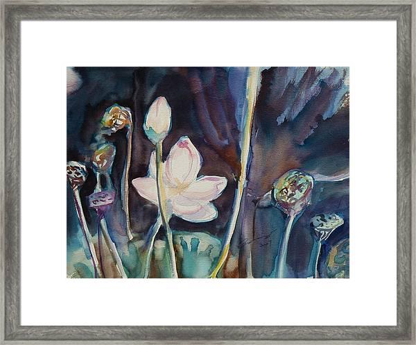 Lotus Study II Framed Print