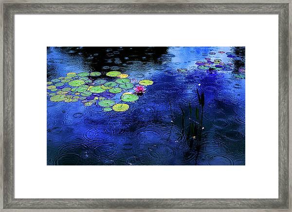 Love A Rainy Day Framed Print