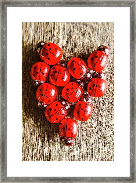 Love Bug Framed Print