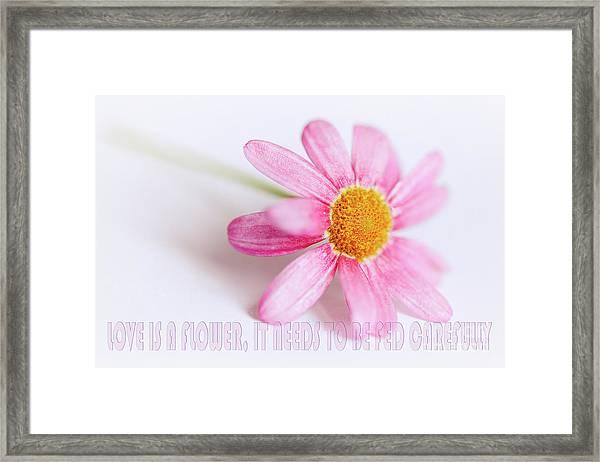 Love Is A Flower Framed Print