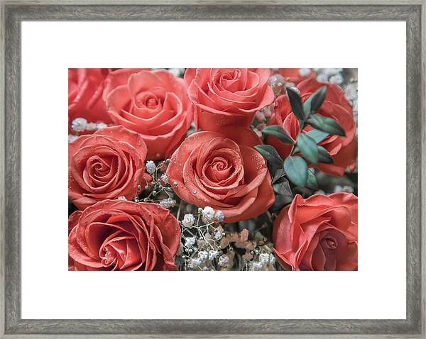 Love Is In Bloom 2 Framed Print