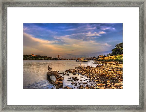 Low Water Vistula Riverscape In Warsaw Framed Print