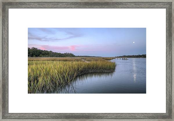 Lowcountry Marsh Grass On The Bohicket Framed Print
