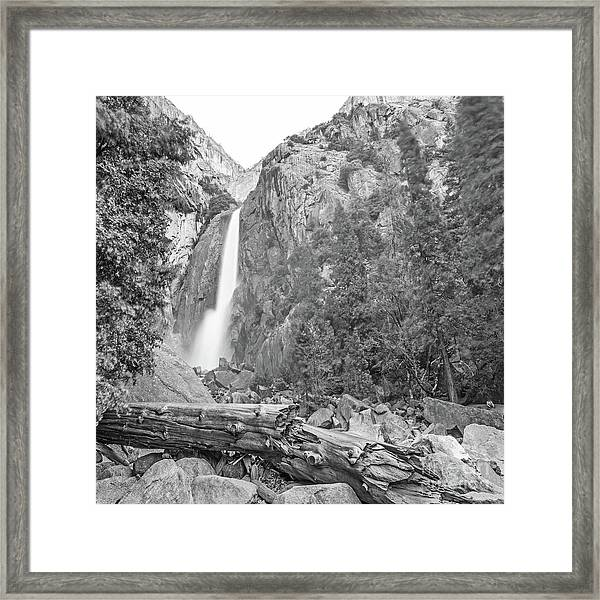 Lower Yosemite Falls In Black And White By Michael Tidwell Framed Print