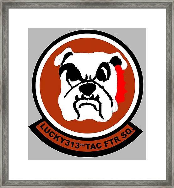 Lucky 313th Tac Ftr Sq Framed Print