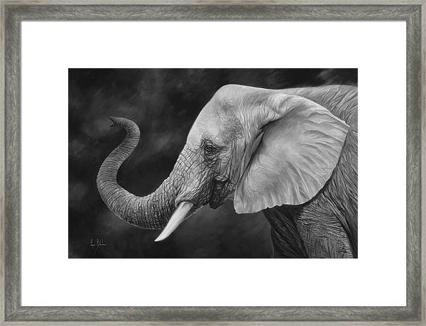 Lucky - Black And White Framed Print