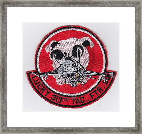Lucky Puppy Framed Print