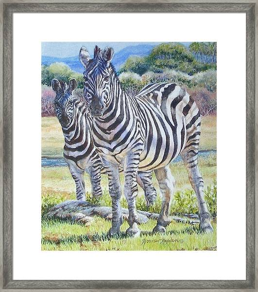 Lucky Stripes Framed Print