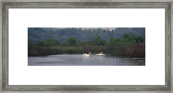 Lulu Lake Lovers Framed Print