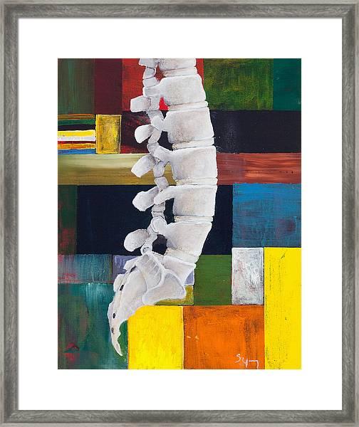 Lumbar Spine Framed Print