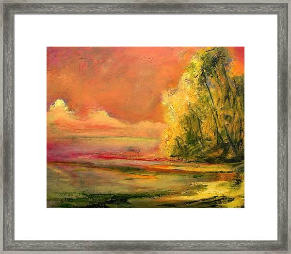Luminous Sunset 2-16-06 Julianne Felton Framed Print