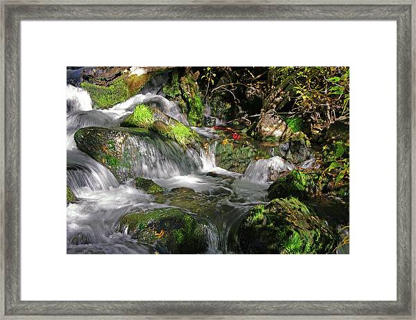 Lundy Creek 3 Framed Print