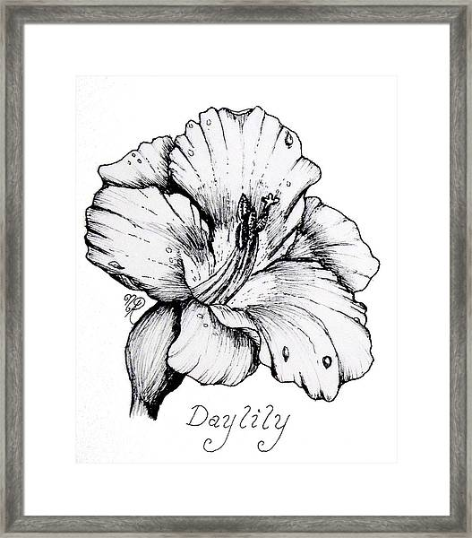 Luscious Daylily  Framed Print