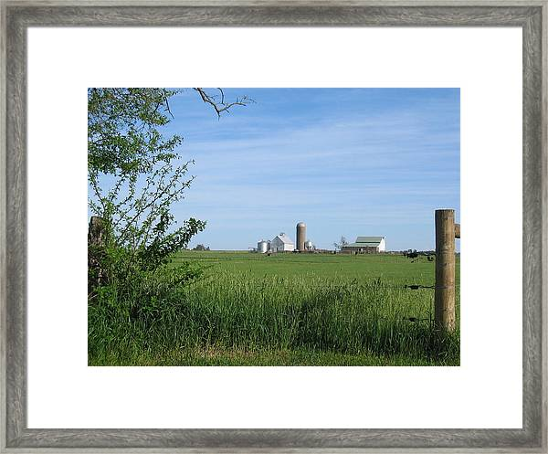 Framed Print featuring the photograph M Angus Farm by Dylan Punke