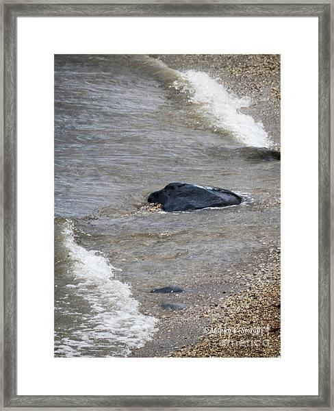 M Landscapes Collection No. L245 Framed Print