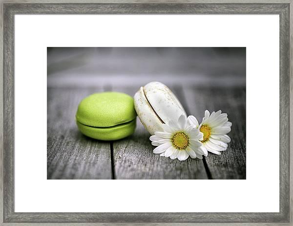Macarons Framed Print