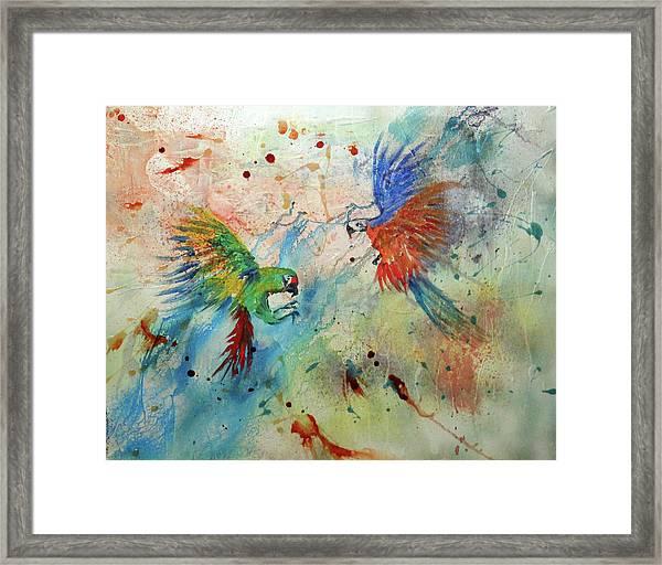 Macaws In Flight Framed Print