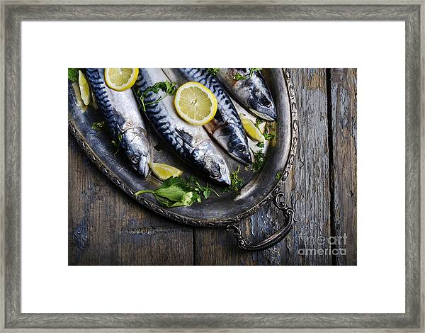 Mackerels On Silver Plate Framed Print