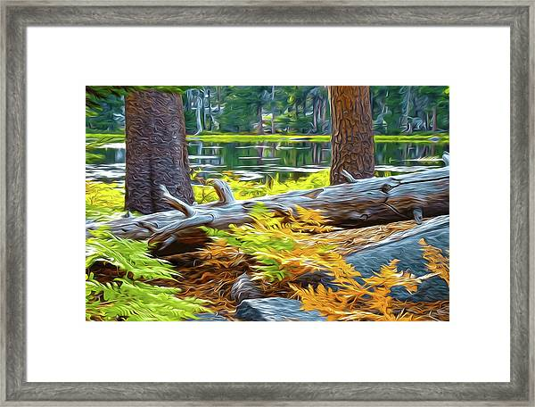 Magic Light Lake Framed Print