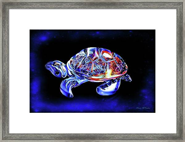 Magic Turtle Framed Print