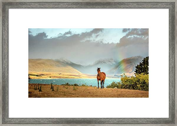 Framed Print featuring the photograph Magical Tekapo by Chris Cousins