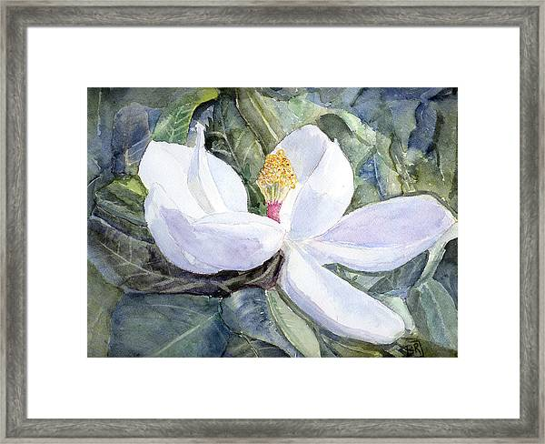 Framed Print featuring the painting Magnolia Blossom by Barry Jones