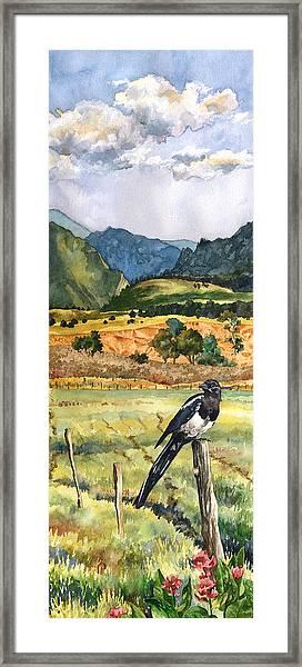 Magpie Framed Print