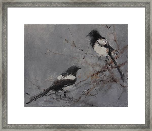 Magpies Framed Print