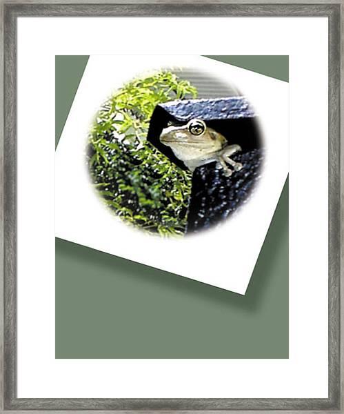 Mailbox  Cameo Framed Print