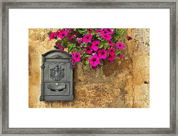 Mailbox With Petunias Framed Print