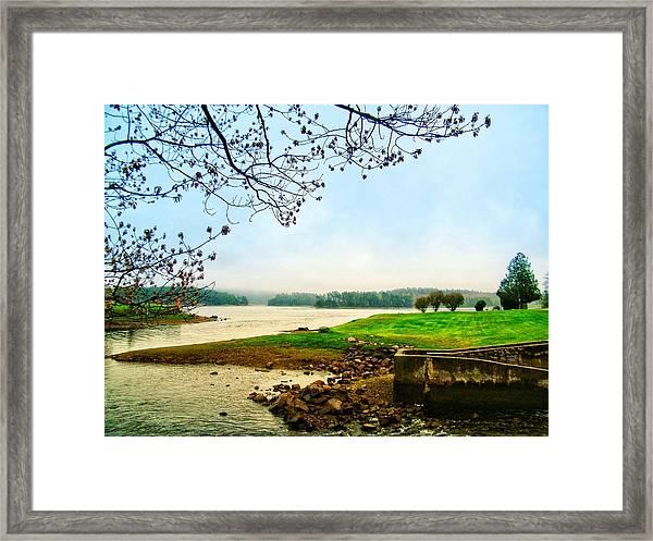 Maine Fog  Framed Print