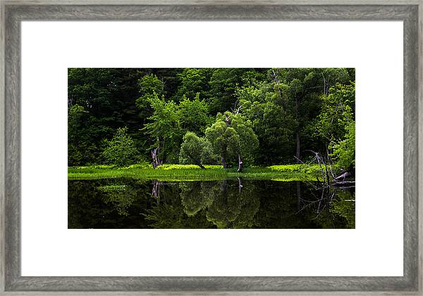 Maine Reflections Framed Print