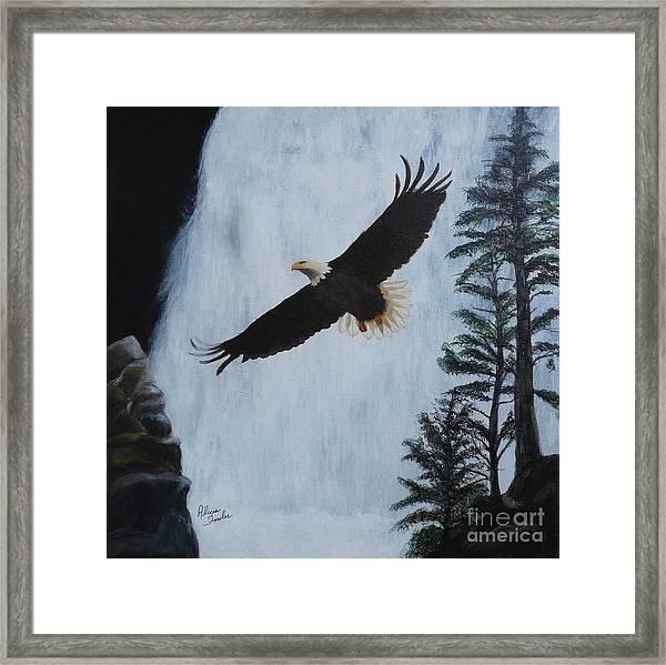 Majestic Bald Eagle Framed Print