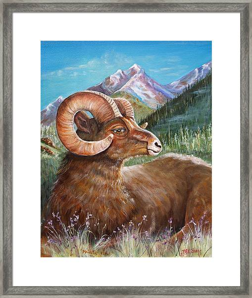 Majesticview Framed Print