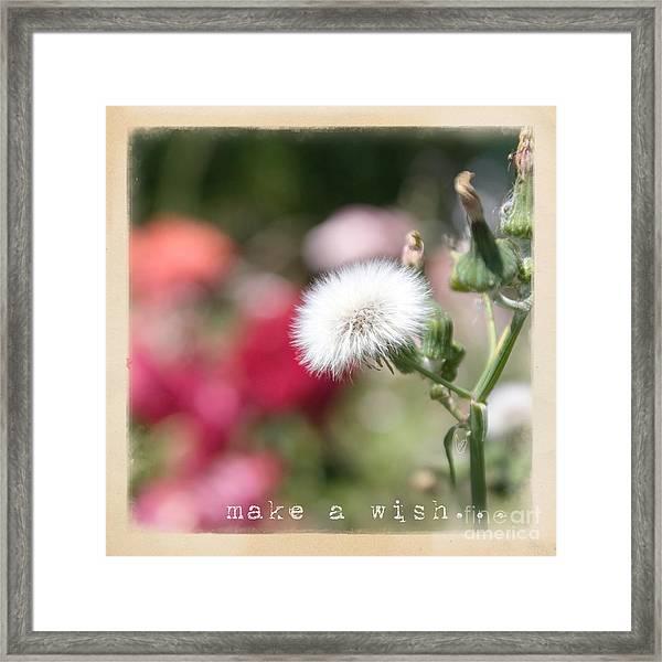 Make A Wish... Framed Print