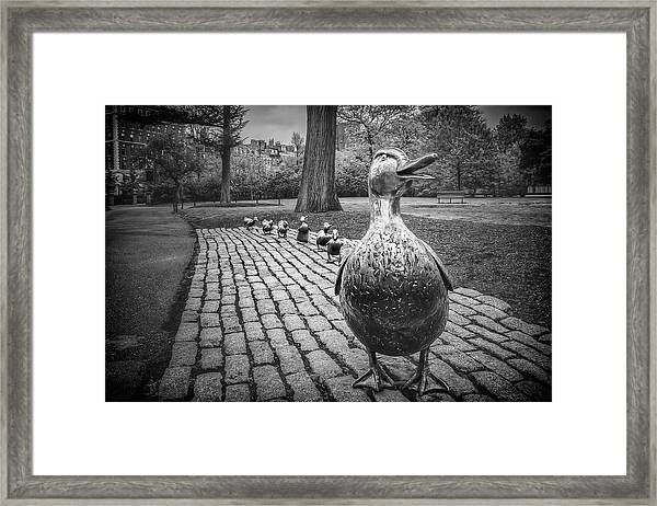 Make Way For Ducklings In Boston Black And White Framed Print