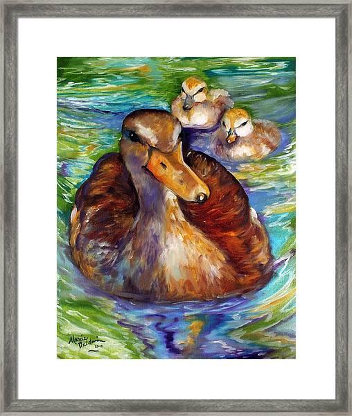 Mallard Mom And Ducklings Framed Print