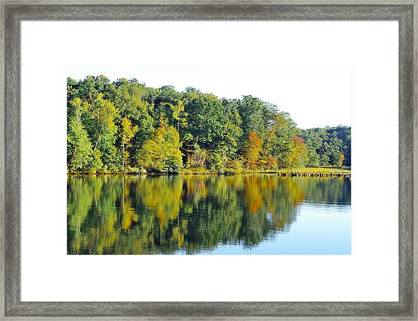 Mallows Bay Framed Print