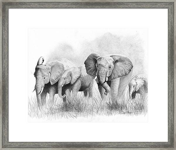 Mama Says Framed Print