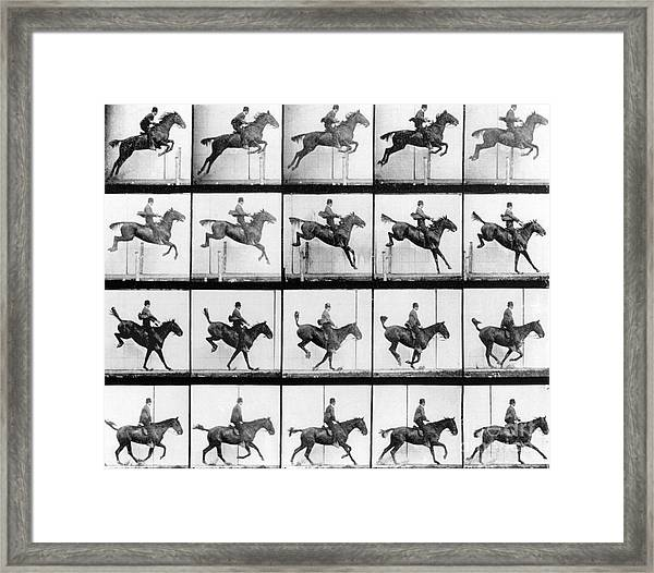 Man And Horse Jumping Framed Print