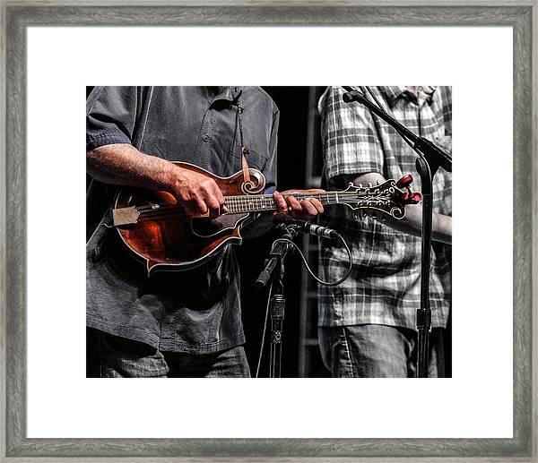 Mandolin Picker Framed Print