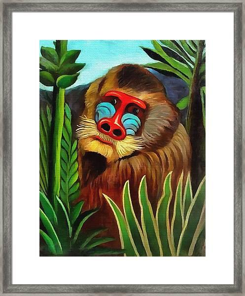 Mandrill In The Jungle Framed Print