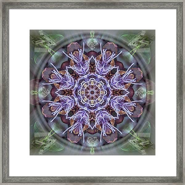 Manifestation Magic Framed Print